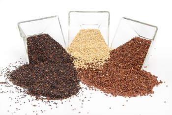 quinoa-das-tolle-korn-in-der-gesunden-kueche