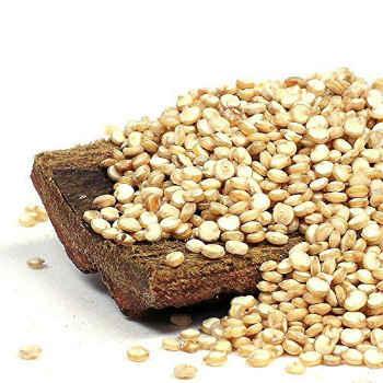 quinoa-rezepte-schnell
